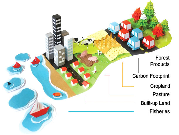 Illustration of the components of an ecological footprint.