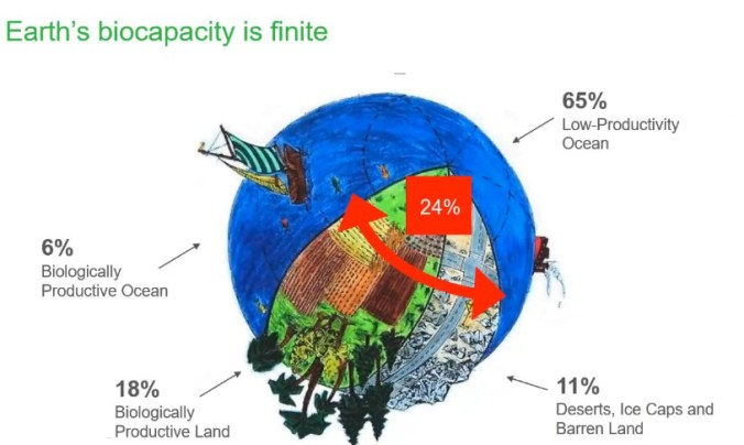 Graphic showing the biocapacity of the earth, its land, sea and life