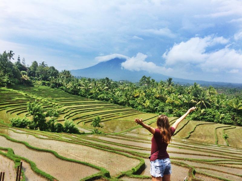 Bali rice fields Papuan