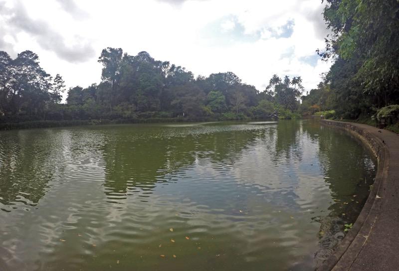 Botanická záhrada Symphony lake