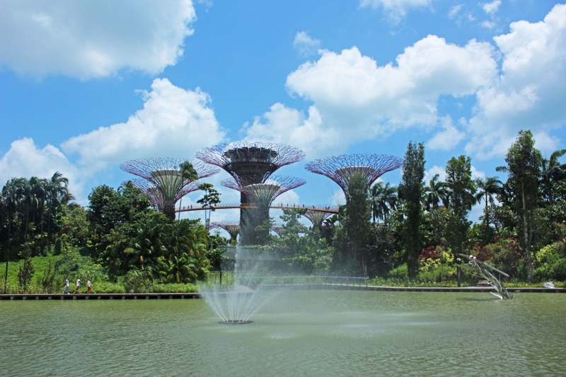Gardens By the bay view