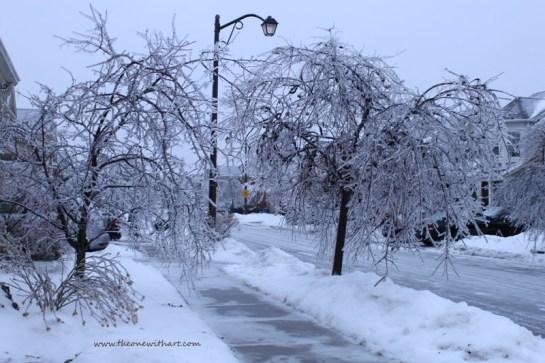 Winter 13-14 1