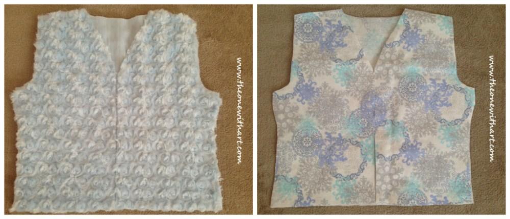 Frozen Vest (3/6)