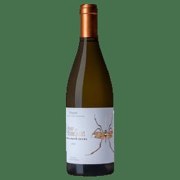 Bodega Bravo Escos - La Font del Mosquit