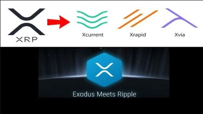 future price of ripple cryptocurrency