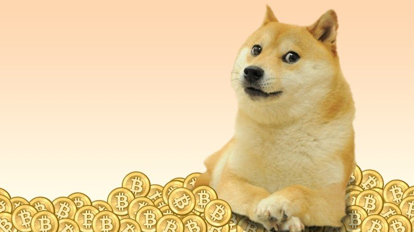 Dogecoin Doge Price Prediction For 2019 2020 And 2025 Will Doge Skyrocket To The Moon Or
