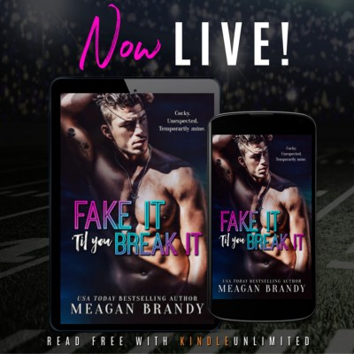 #BlogTour Fake It 'Til You Break It by Meagan Brandy