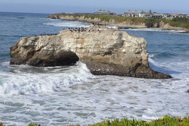 ocean Pacific beach