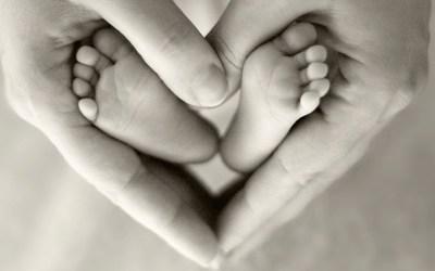 Maternité, partie 1, choisir ses parents