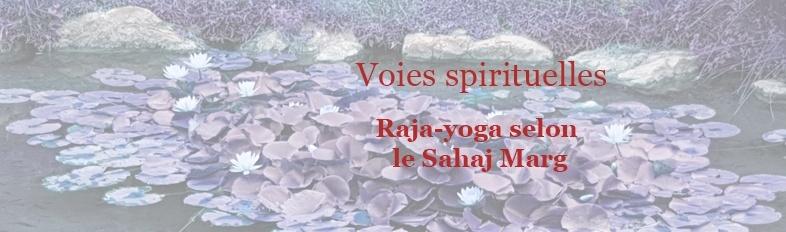 Voies spirituelles Raja-yoga SM