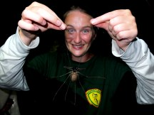Holding a scorpion spider (not hugely calm)