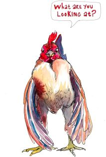 passive-aggressive-chickens-i-paint-to-express-what-im-too-polite-to-say-2__880