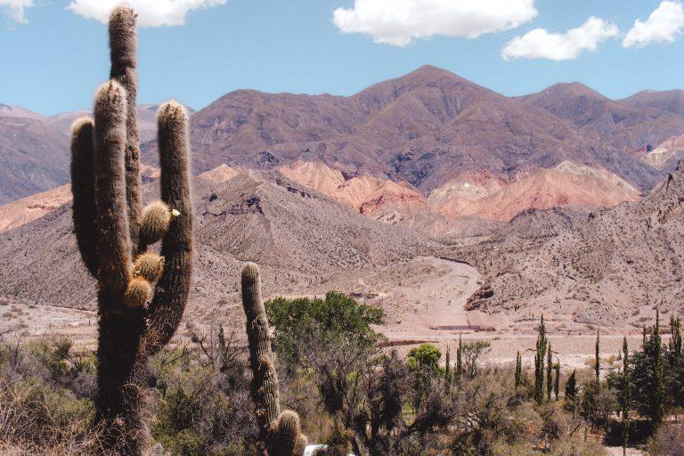 Salta | Argentina | Chile | The Orange Backpack