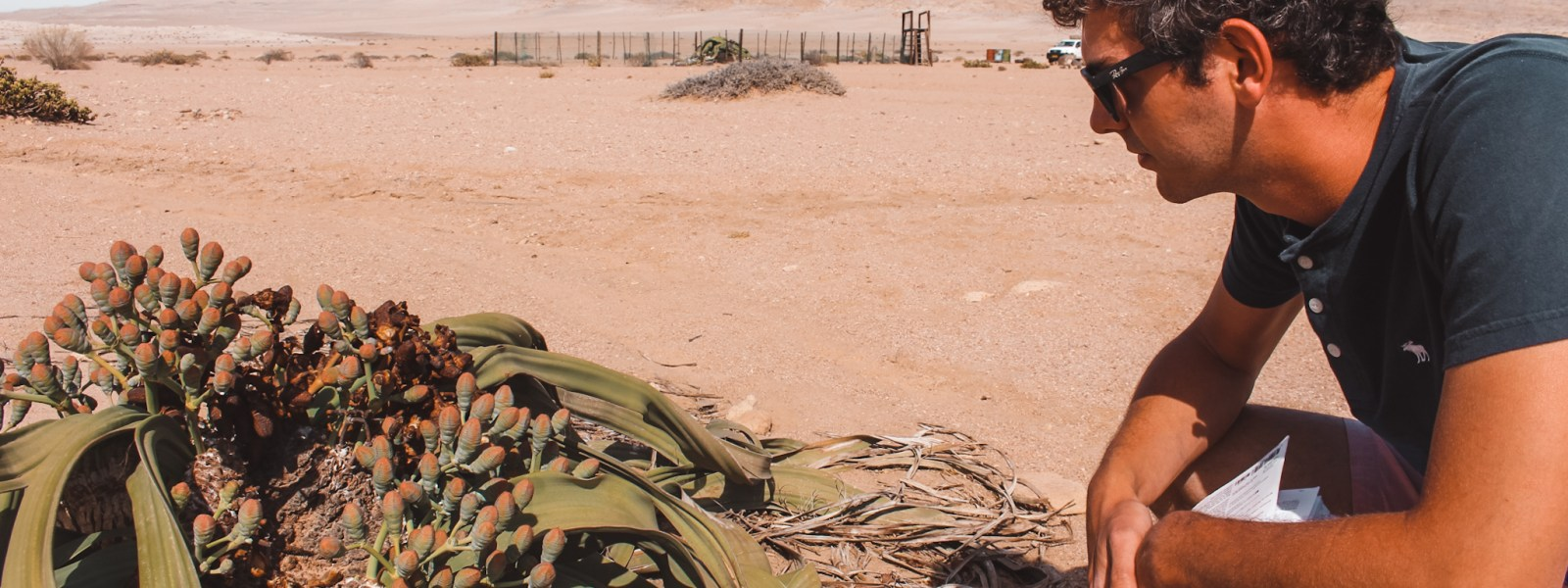 De Welwitschia Drive