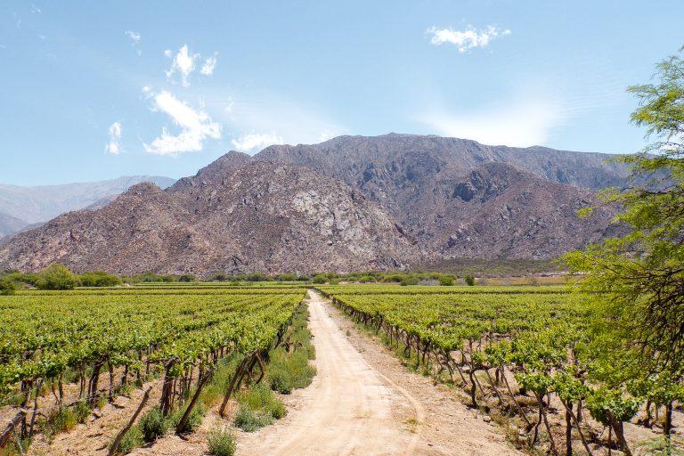 Hostels en hotels in Salta en Cafayate | Argentinie | Argentina | The Orange Backpack