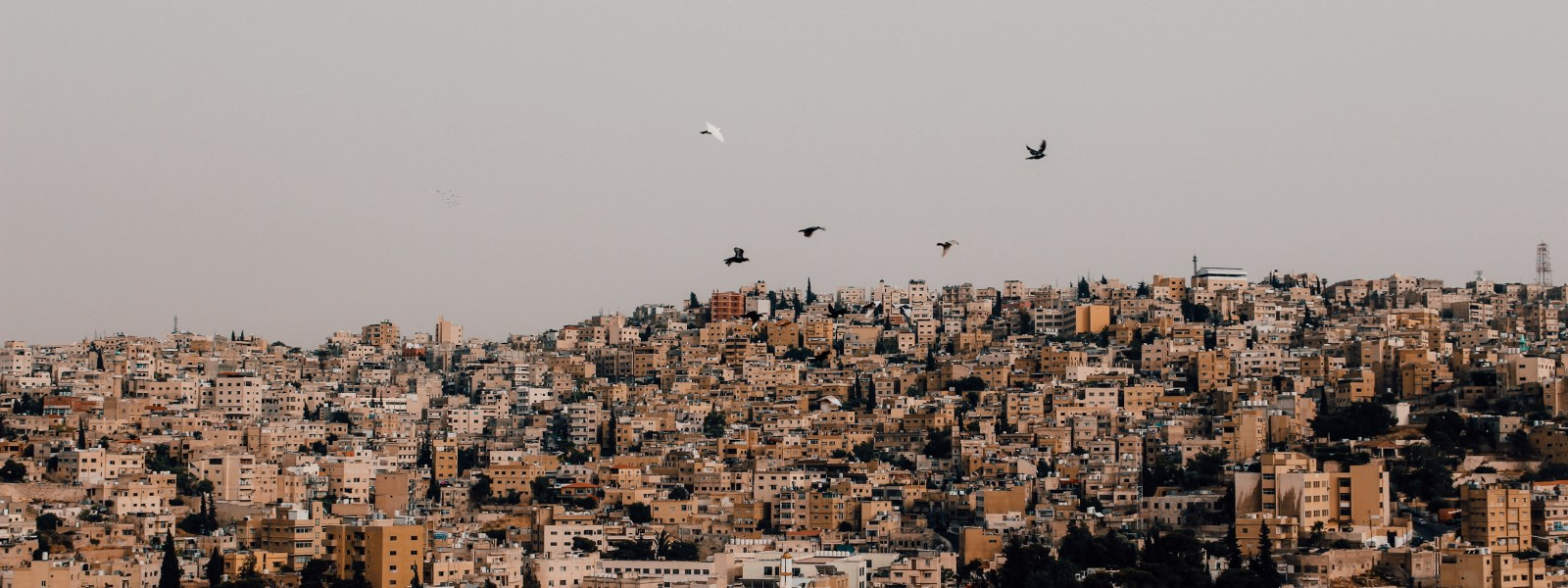 De must-do's in Amman