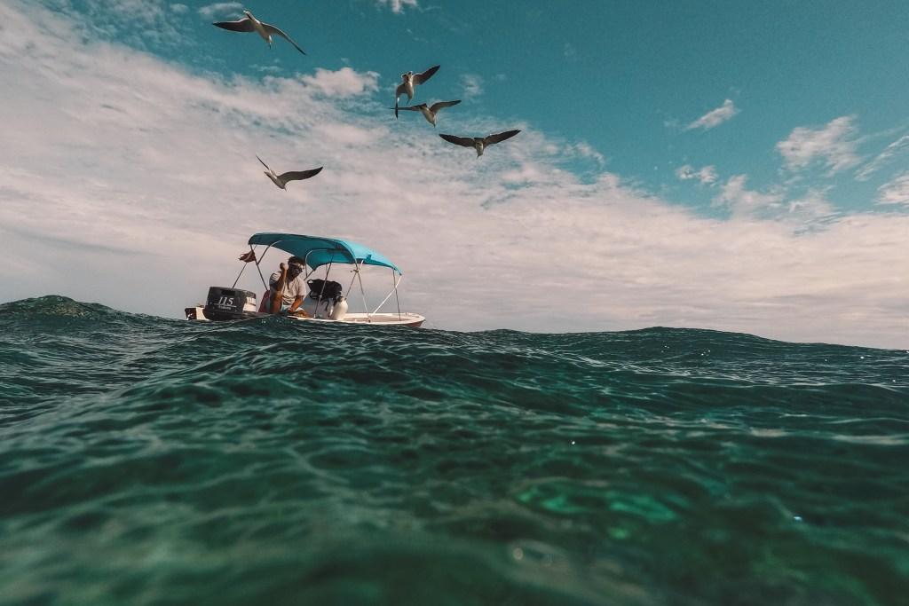 Snorkelen | Hopkins | Belize | De oranje rugzak