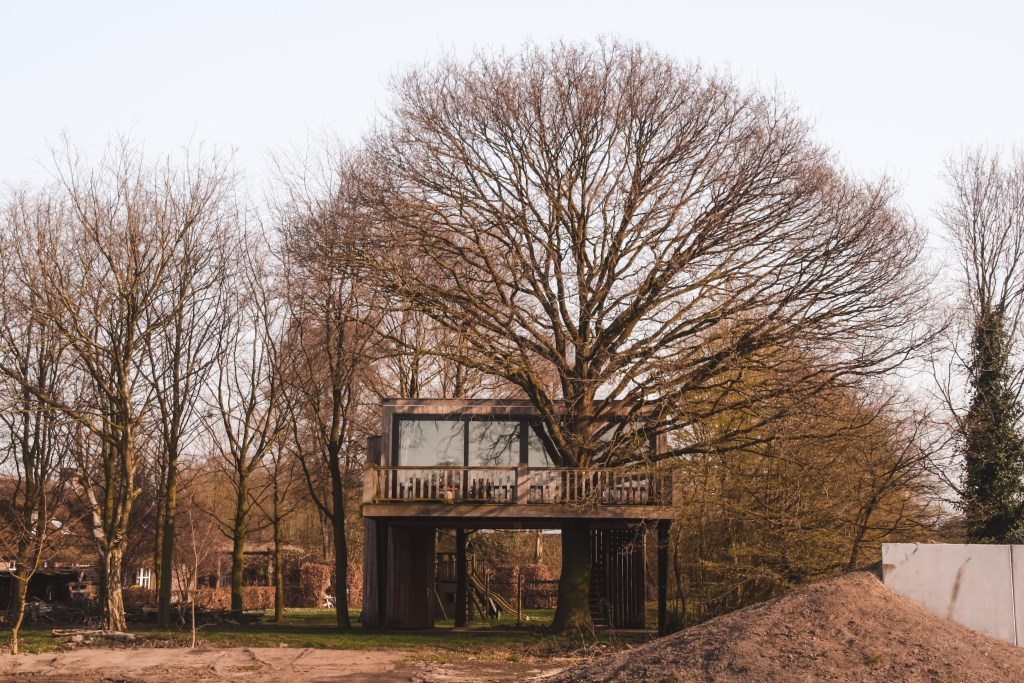 Boomhut in Brabant | Boutique resort Life is Good | The Orange Backpack