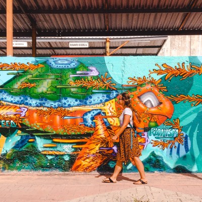 Sea Walls murals | Cozumel Yucatan Mexico