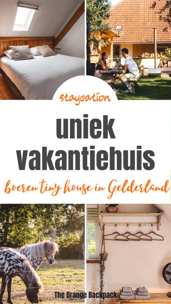 Vakantiehuisje Bij Tante Hanneke Tiny House in Gelderland