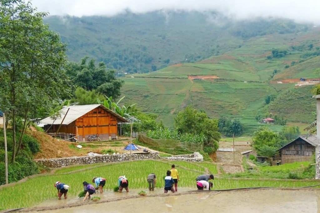 Beste plek voor 30e verjaardag - Vietnam 3