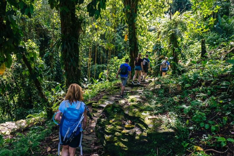 Lost City Trek Colombia | Ciudad Perdida Hike