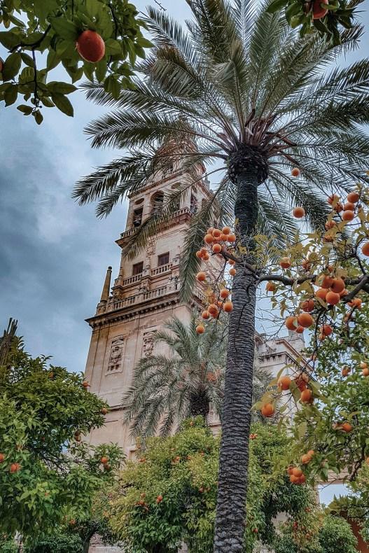 Cordoba Spanje  roadtrip Andalusie