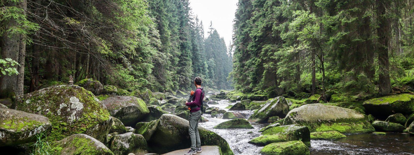 Bezoek Šumava National Park, het grootste park van Tsjechië