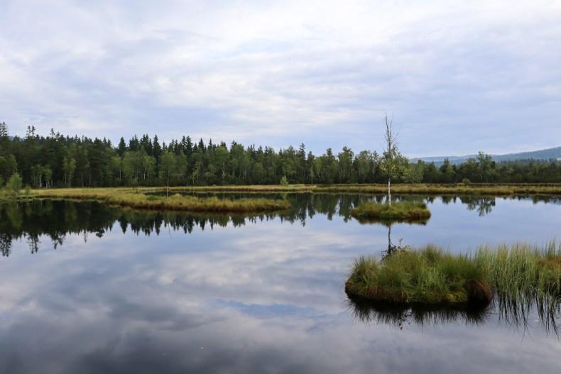 Sumava National Park Tsjechie   Czech Republic