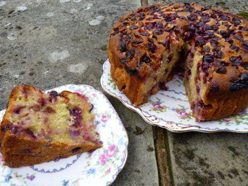sliced grape cake
