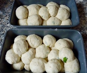 The rolls ready to prove