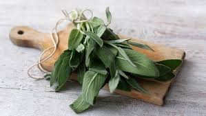 Health Benefits Of Sage And Type 2 Diabetes