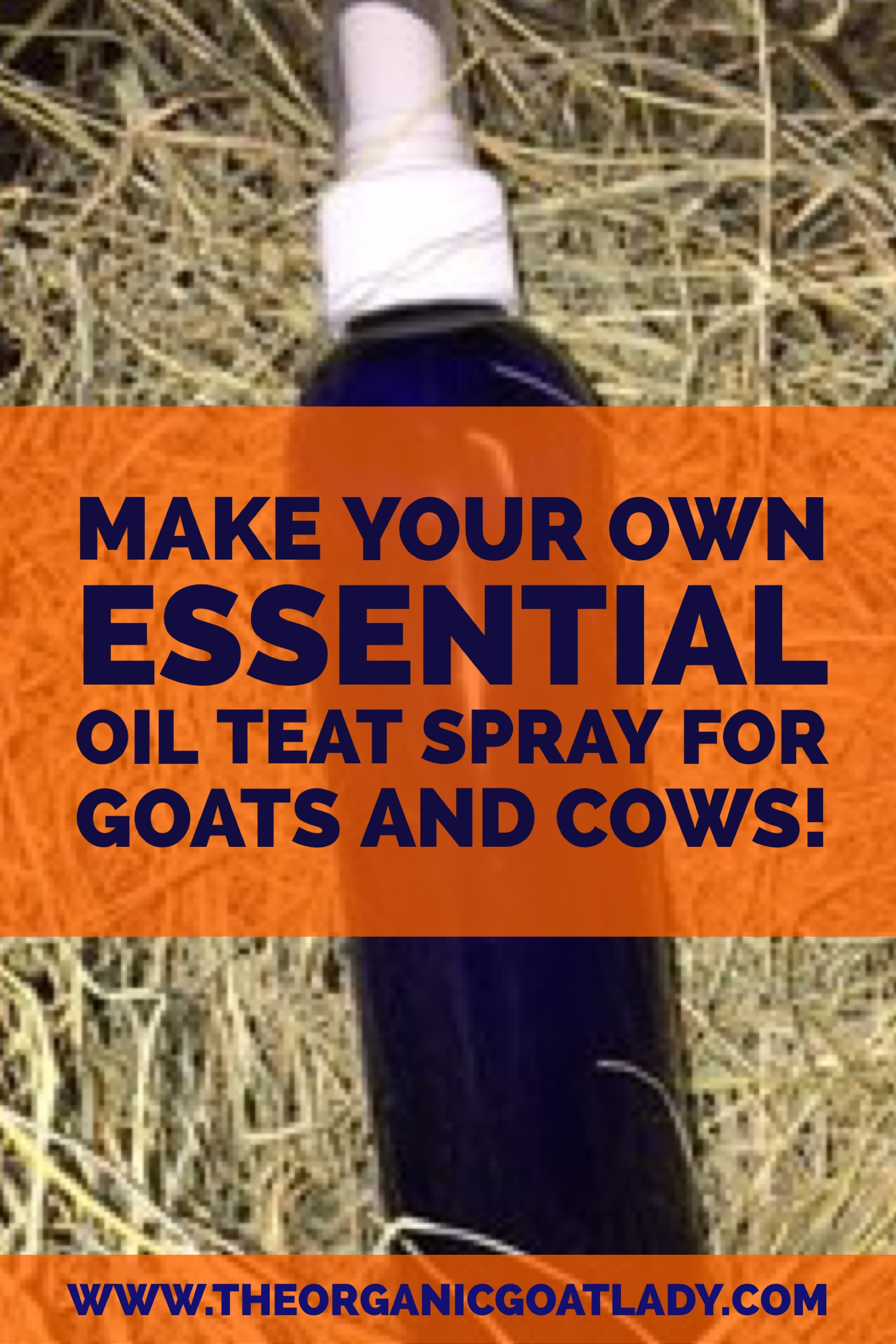 make your own essential oil teat spray for goats and cows the organic goat lady. Black Bedroom Furniture Sets. Home Design Ideas