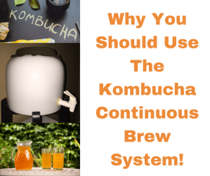 Why You Should Use The Kombucha Continuous Brew System