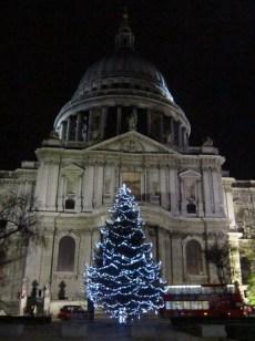 17 St Paul's Tree (Medium)