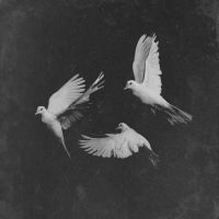 Stream Pusha T's New Single 'Untouchable' Produced by Timbaland