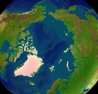 Arctica_surface