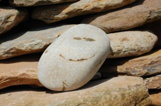 Smiley Stone F Driver