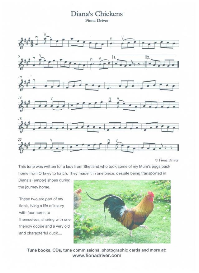 Dianas Chickens 001