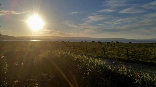 Kirkwall Bay 6th August 2