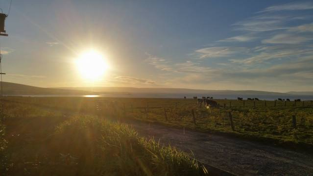 Kirkwall Bay 6th August