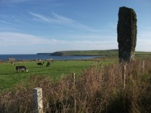 Near Kirkhouse, South Ronaldsay. standing stone 2