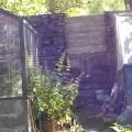 Blide Trust wall Sat