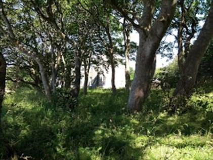 Secret Garden Papdale House
