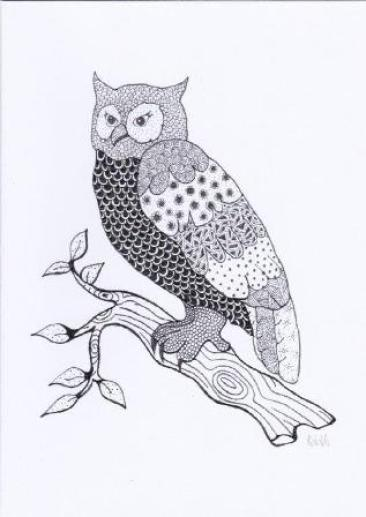 Owl by Anna McEwan