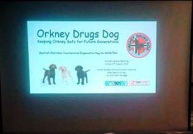 Orkney Drugs Dog 1