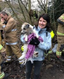 Ethel the dog Fire and Rescue