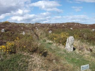 Hill o Many Stanes Caithness