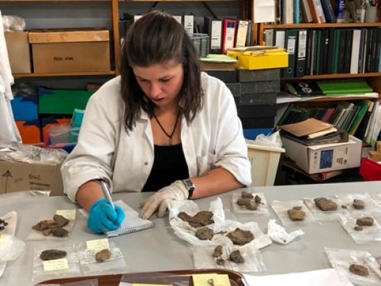 Swandro archaeology