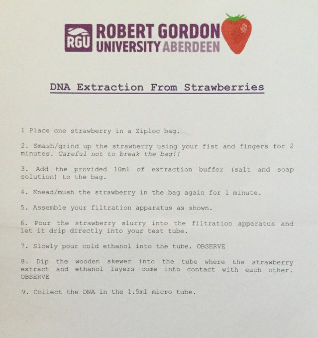 strawberry experiment Robert Gordons 1